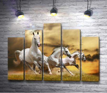 Три белых бегущих коня