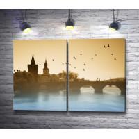 Птицы над Карловым мостом, Прага