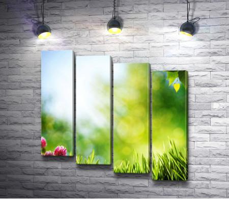 Трава с вереском в солнечных лучах