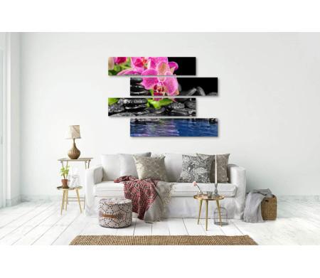 Розовые орхидеи и камни у воды
