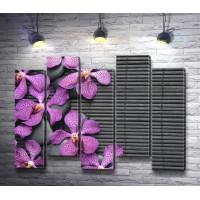 Лиловые орхидеи на камнях и бамбуковом коврике