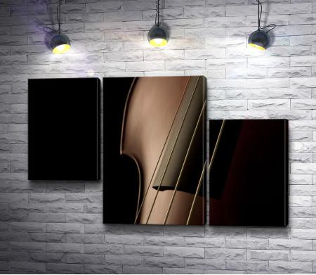 Смычковый инструмент на черном фоне