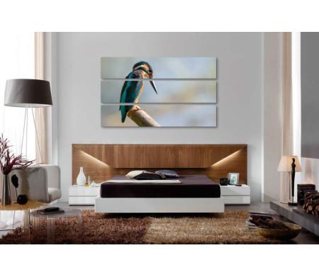 Птица Обыкновенный зимородок на ветке