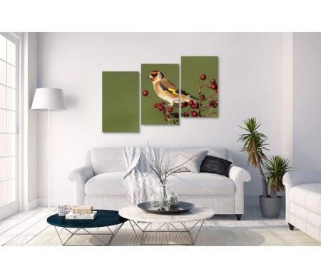 Птица чиж на ветке с ягодами