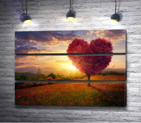Дерево в форме сердца на поляне маков