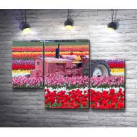 Розовый трактор в поле тюльпанов