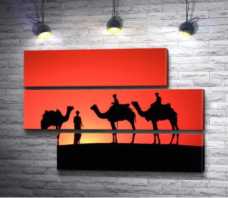 Верблюды с наездниками