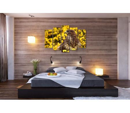 Орел и желтый луг