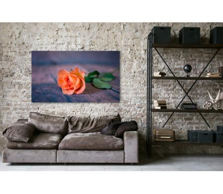 Роза персикового цвета на деревянном полу