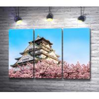 Замок Осака в цветах сакуры