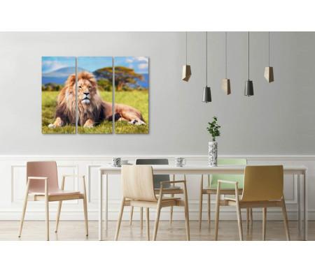Лев на природе