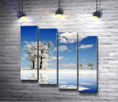 Зимние деревья возле воды