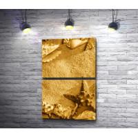Золотой песок и морские ракушки