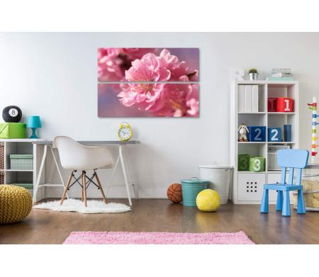 Нежный цветок сакуры