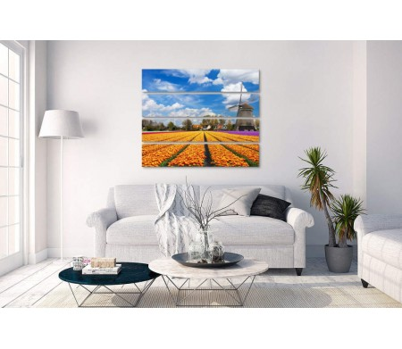 Цветочное поле и мельница в Голландии