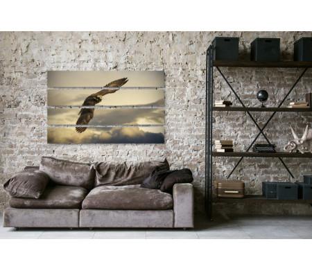 Орел в небе