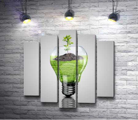Электрическая лампочка и растение внутри нее
