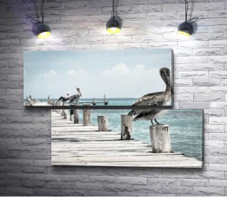 Пеликаны на причале