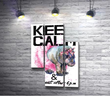 """Мотивационный постер """"Не ешь после шести"""" с носорогом в пачке"""