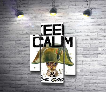 """Постер """"Keep Calm & be cool"""" с собакой в шапке Наполеона"""