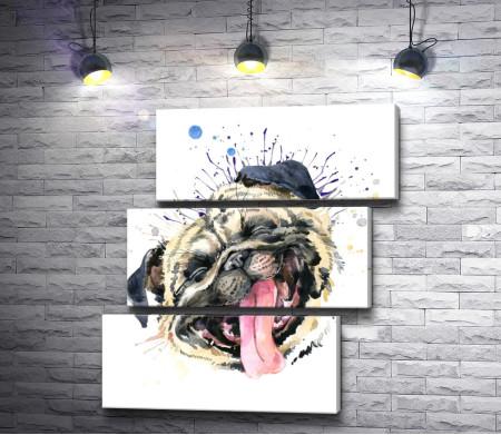 Веселый бульдог с высунутым языком