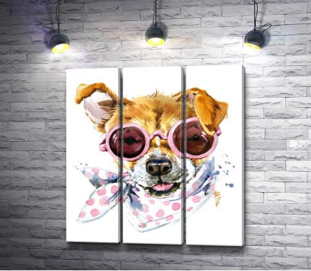 Собака с приподнятыми ушами с платком на шее