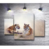 Тигриная пара на отдыхе