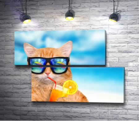 Кот и фруктовый коктейль