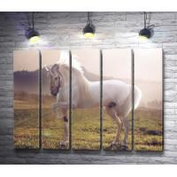 Белая лошадь резвится в поле