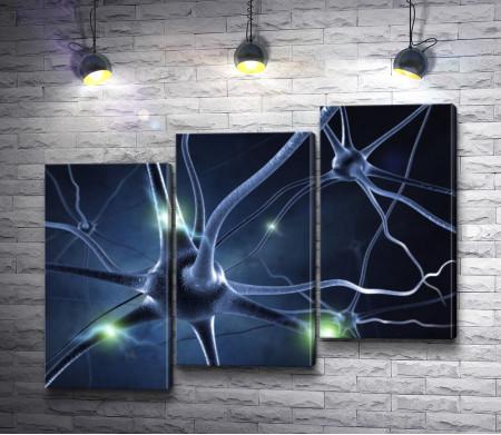 Нейронные связи