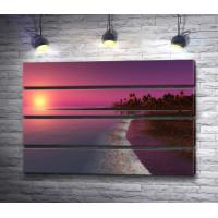 Пальмы на пляже в розовом закате