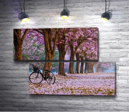 Весенний сад и велосипед