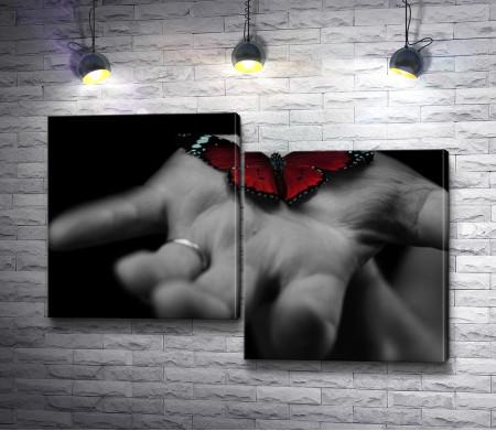 Красная бабочка на черно-белой ладошке