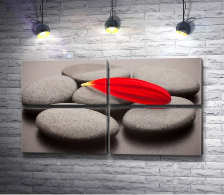 Красный лепесток среди камней в коричнево-серой гамме