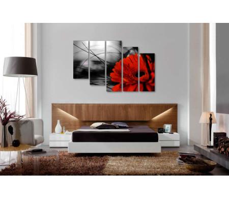 Красная гербера на черно-белом фоне