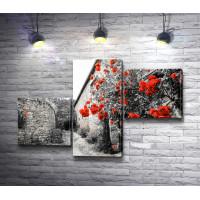 Красные вьющиеся цветы на черно-белой стене