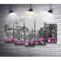 Розовые тюльпаны на фоне Амстердама в черно-белой гамме