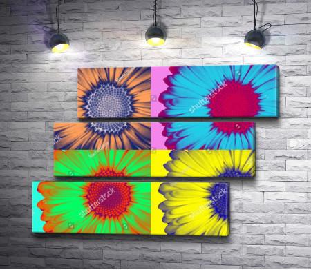Цветные подсолнухи