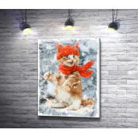 Котенок в шапке и шарфе зимой