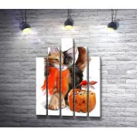 Котенок с тыквой на Хэллоуин