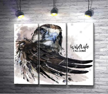Крыло орла