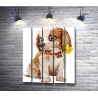 Счастливый щенок с одуванчиком