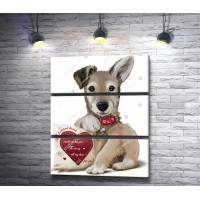 Очаровательный щенок и подушка-сердце