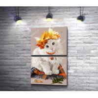Белый котенок в осеннем венке