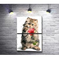 Пушистый котенок с розой