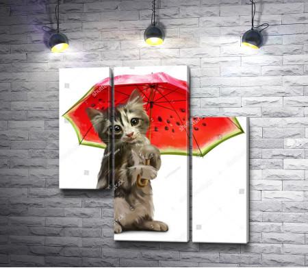 Котик под арбузным зонтиком