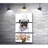 Мопс-повар и пряничные косточки