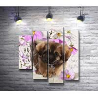 Пушистый щенок и цветы