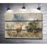Красавец-олень в пасмурный день на лугу