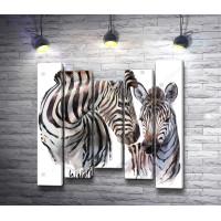 Две зебры в дикой природе